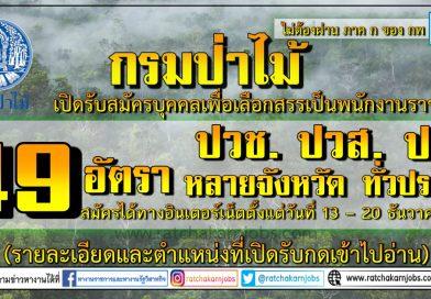 กรมป่าไม้ เปิดรับสมัครบุคคลเพื่อเลือกสรรเป็นพนักงานราชการ 49 อัตรา ป.ตรี ทุกสาขาและอื่นๆ ปวส. ปวช. ม.3 หลายจังหวัด ทั่วประเทศ สมัครได้ทางอินเตอร์เน็ตตั้งแต่วันที่ 13 – 20 ธันวาคม 2562