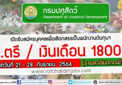 กรมปศุสัตว์ เปิดรับสมัครบุคคลเพื่อเลือกสรรเป็นพนักงานเงินทุนฯ ป.ตรี / เงินเดือน 18000 ตั้งแต่วันที่ 21 – 28  กันยายน  2564 (รายละเอียดกดเข้าไปอ่าน)